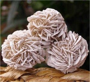 Desert Rose Crystals